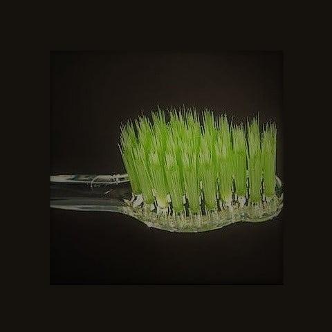 Dantų šepetėlio apatite su žaliąja arbata šereliai