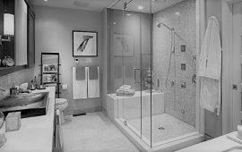 priemonės vonios kambariui ir tualetui